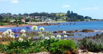 The entrance to the town and lovely beach of Penguin is lined with community gardens.