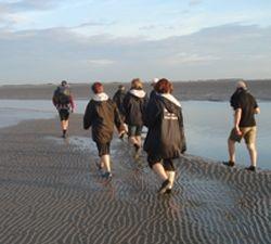 In mei 2012 is het weer zover, de eerste wadlooptochten in Holwerd. Beleef het zelf en ga mee, www.wadlopen-holwerd.nl