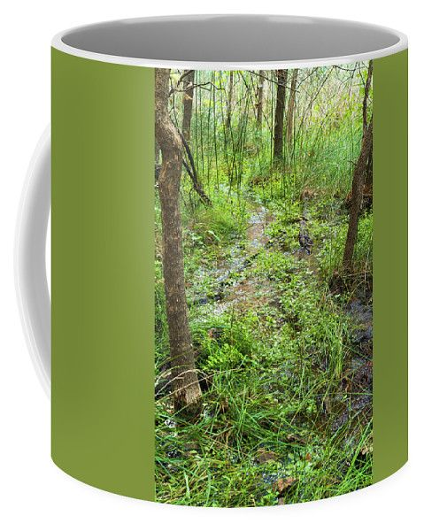 Coffee Mug featuring the photograph Nature In Green by Evgeniya Lystsova. Enjoy your Coffee time!  Our ceramic coffee mugs are available in two sizes: 11 oz. and 15 oz. Each mug is dishwasher and microwave safe. SHIPS WITHIN 1 -2 business days