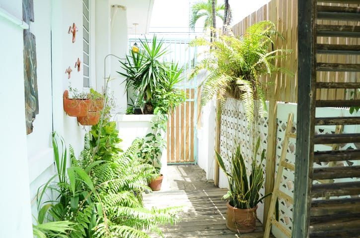 Дом Тур: красочный дом в Пуэрто-Рико   квартира терапия