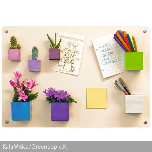 Magnetische Blumentöpfe von KalaMitica