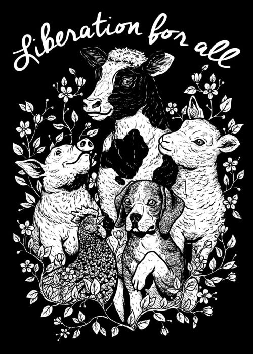 New design drawn by the amazing veganmisanthrope!! By early next week I will have them available for sale! SO EXCITED