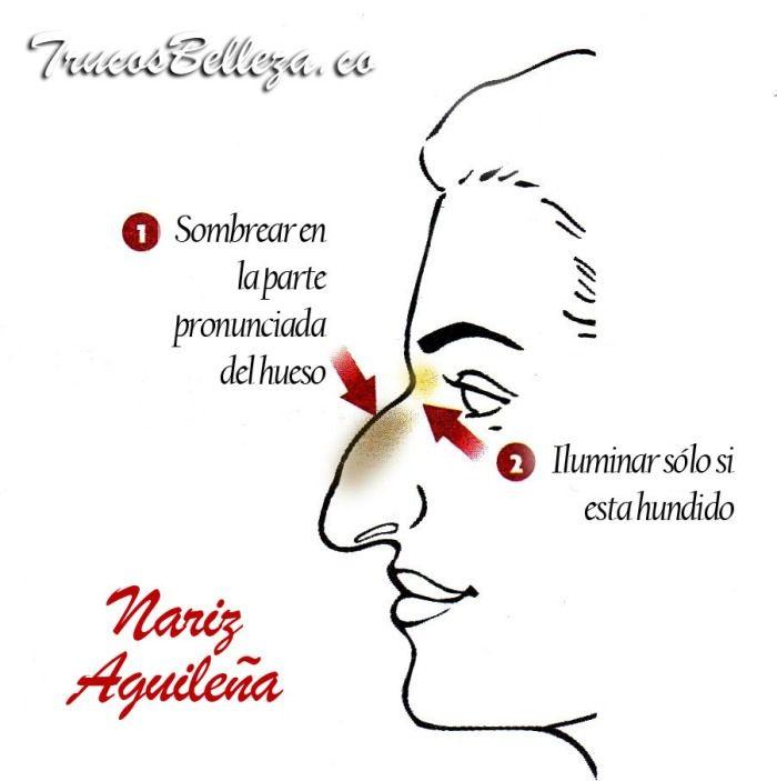 En este articulos les enseñamos a como corregir tu tipo de nariz usando correctores para iluminar y obscurecer determinadas zonas y vernos mejor. Disfruten