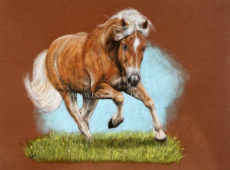 Drawing+of+a+horse+by+Oceansoul84.deviantart.com+on+@DeviantArt