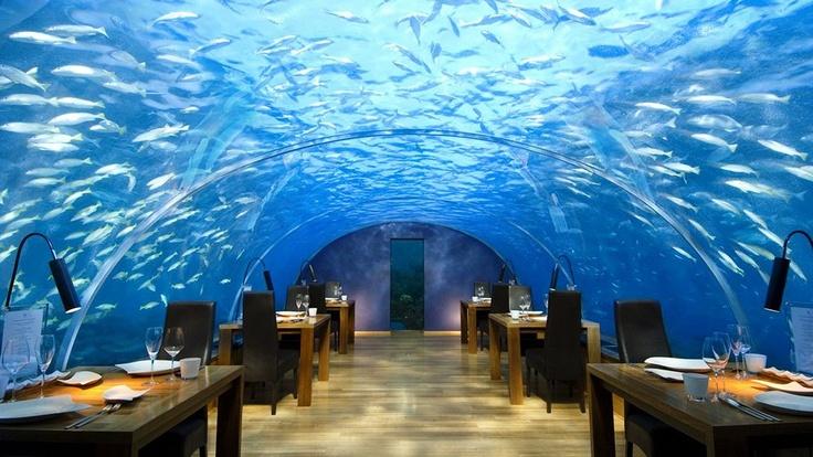 Maldives Island Tourism in Maldives - Next Trip Tourism