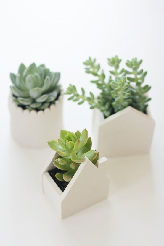Handmade clay pots for succulents - March 2014 Adult Craft Night