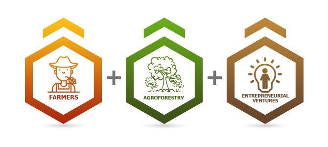 RAD   Restoration Agriculture Development