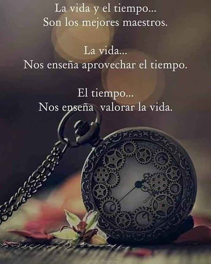 Vida Tiempo Vivir Vive Vivalavida Motivation Motivacion Reflexion Reflexiones Vive Energia Frase Palabras De Reflexion Frases De Sabiduria Frases