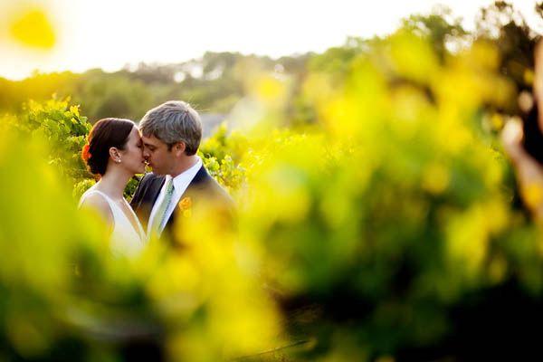 Outdoor, bride, groom, kiss, grape vines, vineyard, Reception Picture