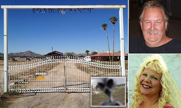 """John Edmonds and his wife Joyce say the aliens, which they call 'grays' and claim are shown in this picture John took, have been attacking them for years on the property in Buckeye, Arizona."""