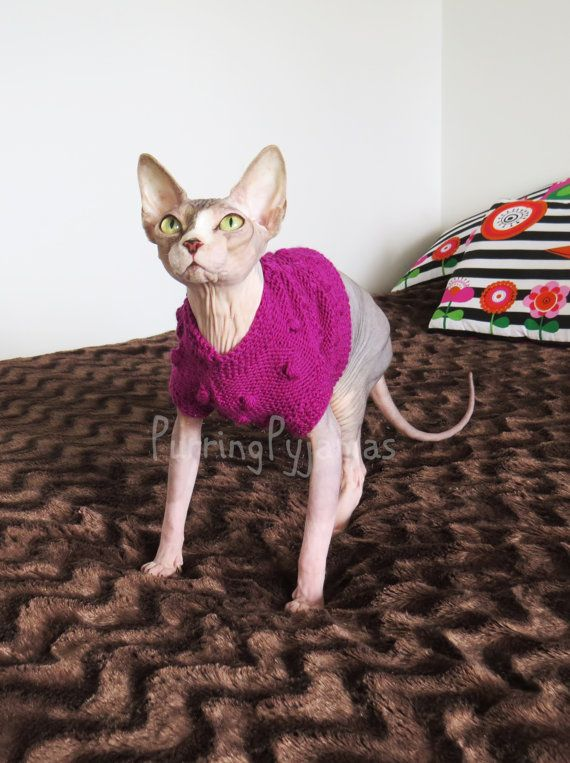 Cat clothes  warm cat sweater sweater for cats by PurringPyjamas