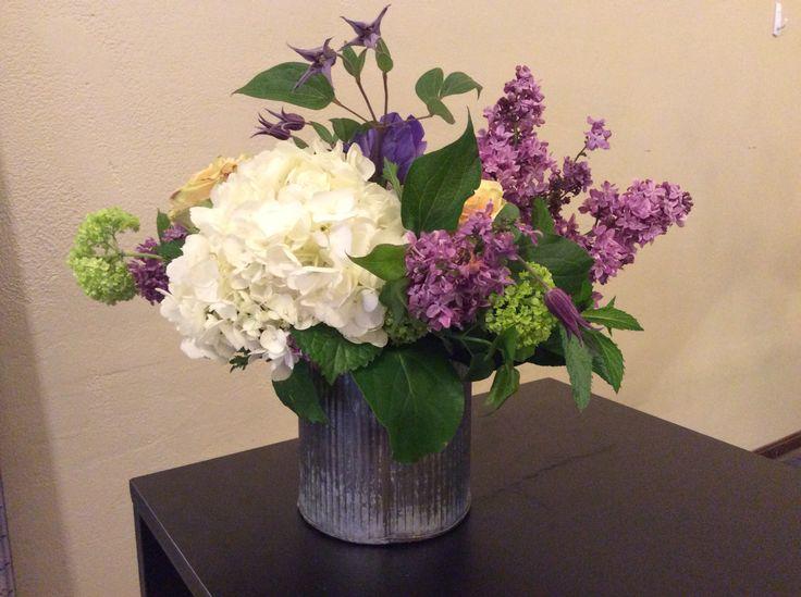 Hydrangea, Lilac, and Viburnum
