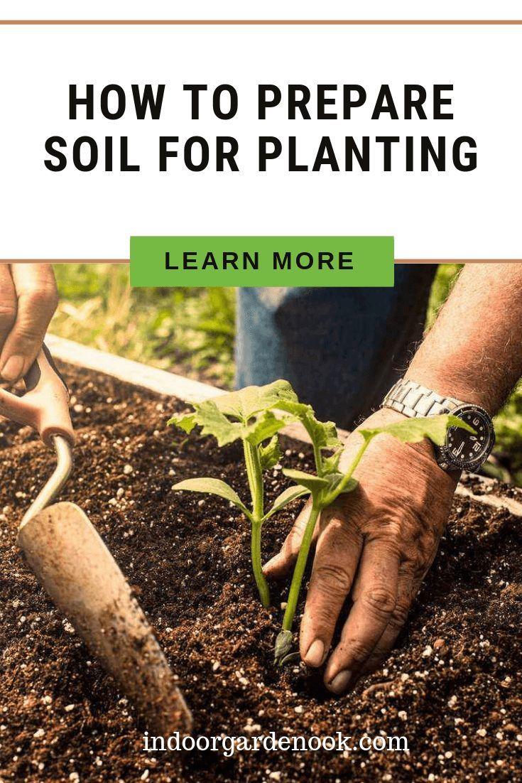 How to prepare soil for planting indoor garden nook