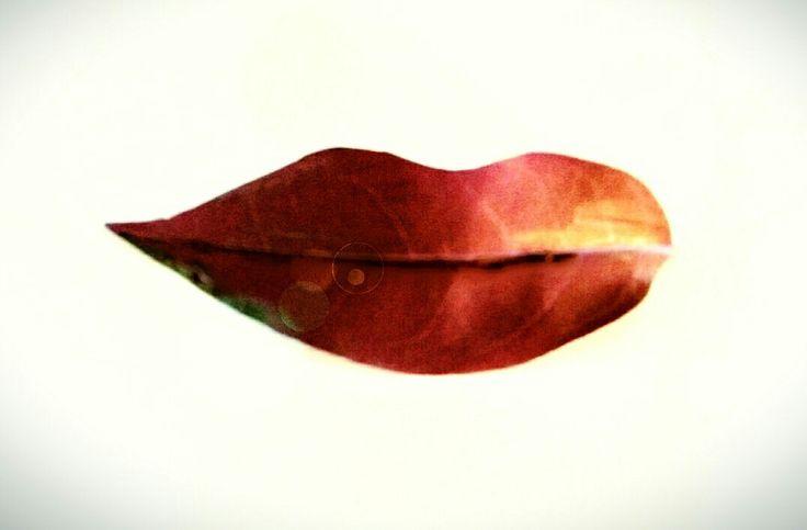 Leaf like lips