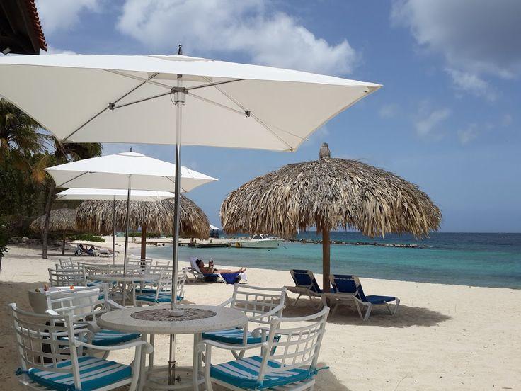 Moomba Beach Club Curacao The Best Beaches In World