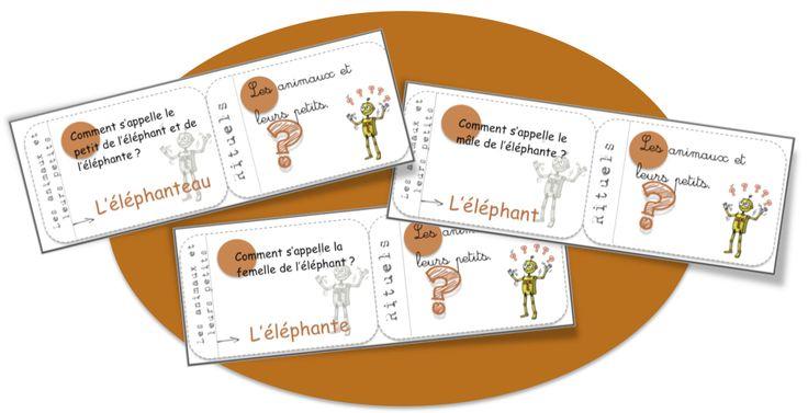 Cartes rituels vocabulaire: les animaux et leurs petits