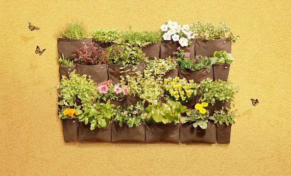 Set 3NEW Pack M di erbe aromatiche di 3 fioriere di di HerbPack