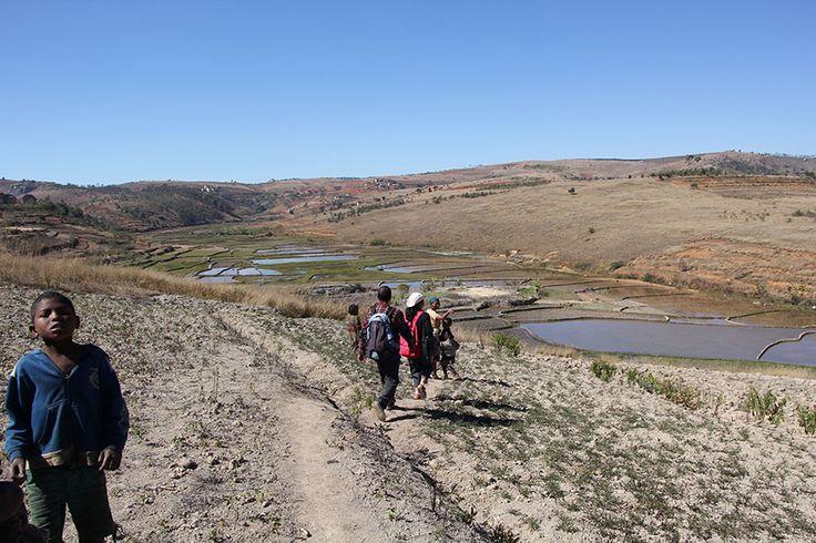 #Madagascar - Project #Voiala http://www.favini.com/en/enviroment/voiala/project-voiala/ - Share it on Twitter https://twitter.com/favini_en/status/549855164044423168