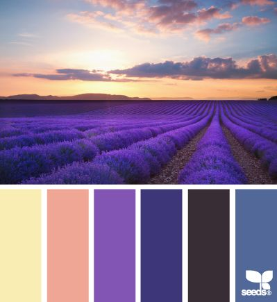 Color Field - http://design-seeds.com/index.php/home/entry/color-field9