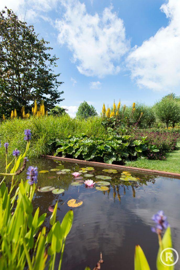 Tuinideeën De Rooy Hoveniers villa tuin klassieke tuin vijver waterplanten Waspik