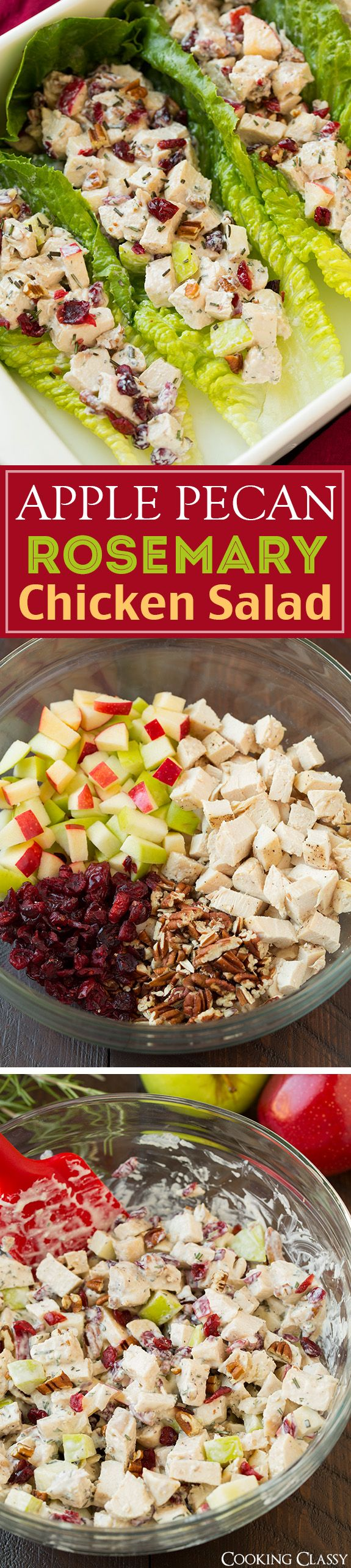 Apple Pecan Rosemary Greek Yogurt Chicken Salad - perfect in a sandwich or wrapped in lettuce