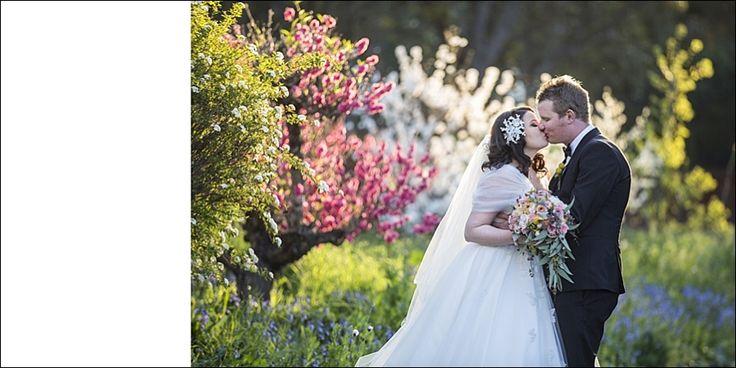 sydney wedding photographer - Google Search