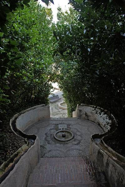 La Planta del Mes. Alhambra de Granada