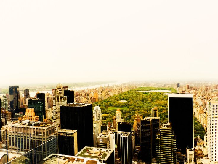 Image result for new york school half cityview half central park