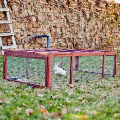Advantek The Courtyard Rabbit Enclosure