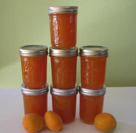 MCP® Apricot-Pineapple Jam Image 1