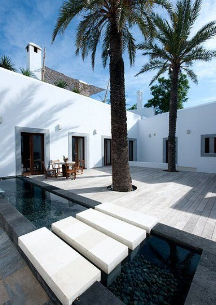 interior courtyard and pool with palm tree's