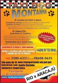 TAXI DOG MONTANHA TRANSPORTE DE ANIMAIS NO RIO DE JANEIRO: RIO DE JANEIRO-RJ x ARACAJU-SE