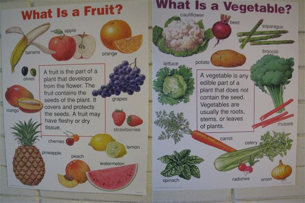 what is the difference between fruit and vegetable is a potato a fruit or vegetable