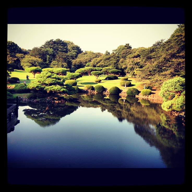 Shinjuku Gyoen, (taken by me with iphone)