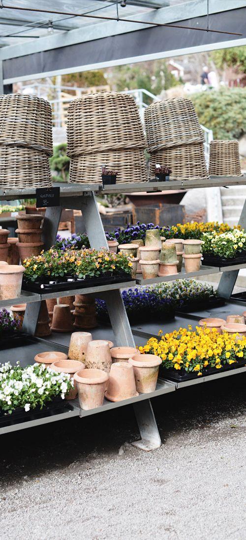290 best Garden retail images on Pinterest Garden centre Visual