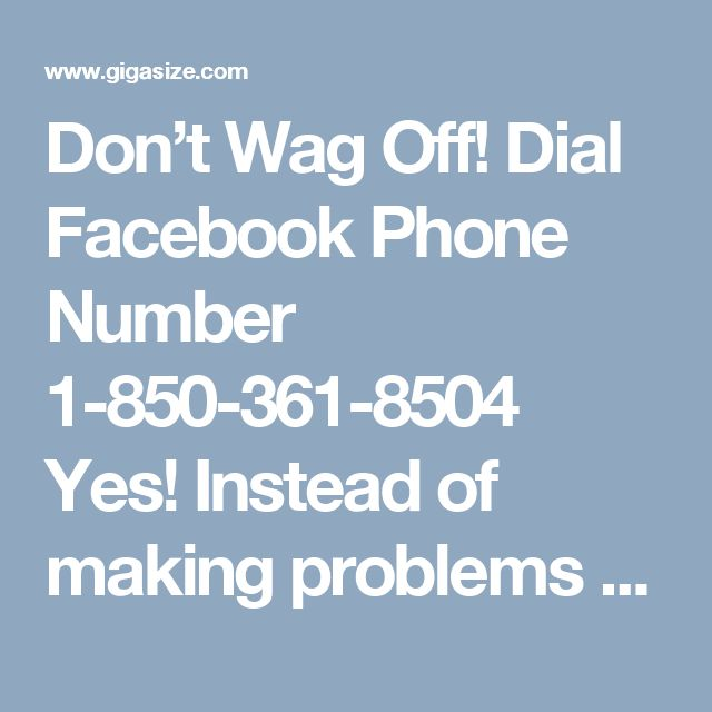 Don't Wag Off! Dial Facebook Phone Number 1-850-361-8504  Yes! Instead of making problems a severe headache, just pick your cell phone and dial Facebook Phone Number 1-850-361-8504 to get rid of all your problems in no time. We are a leading tech aid provider working for many years in this domain. So you can count on us! We will be more than happy to cater your technical needs. For more information: http://www.monktech.net/facebook-customer-support-phone-number.html