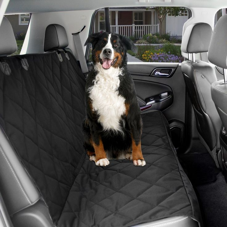 1000 ideas about dog car seats on pinterest dog car seat covers dog seat and pet seat covers. Black Bedroom Furniture Sets. Home Design Ideas