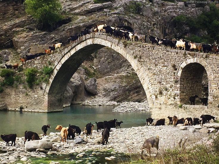 Unentdecktes Europa: Albanien - Ziegen auf der Brücke