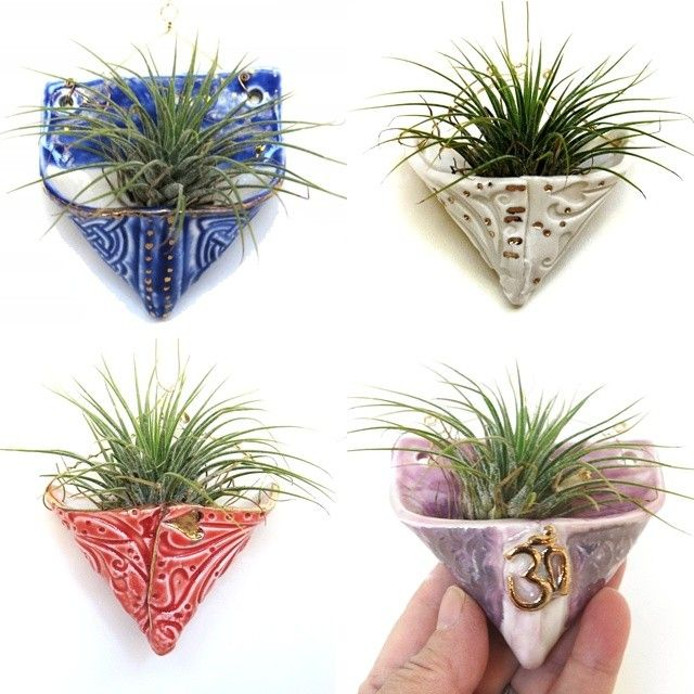 #airplant holder My new line of tiny cheer.