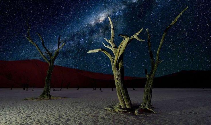 """8. Deserto da NamíbiaCom suas árvores secas e dunas vermelhas, a Reserva Natural da Namíbia poderia ser um local intergaláctico em si. O deserto remoto é um dos lugares mais """"escuros"""" do mundo. Como uma reserva internacional Dark Sky, o local tem investido em sua preservação utilizando apenas lâmpadas vermelhas econômicas que não causam impacto sobre os níveis de poluição luminosa+ 10 motivos para você conhecer a Namíbia"""