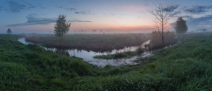 Small creek a great future by Alexandr Bredikhin on 500px