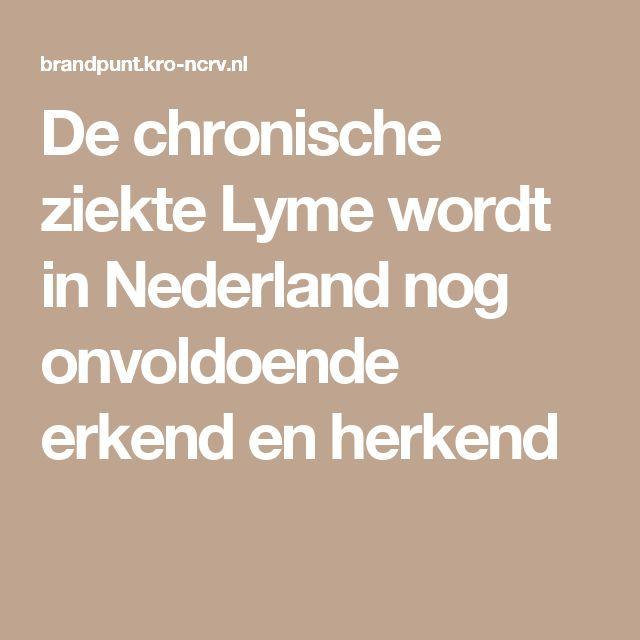 De chronische ziekte Lyme wordt in Nederland nog onvoldoende erkend en herkend