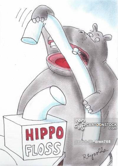 Hippo Floss