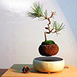 Japanese style Levitating Air Bonsai Pot  Magnetic Levitation Suspension flower (White)