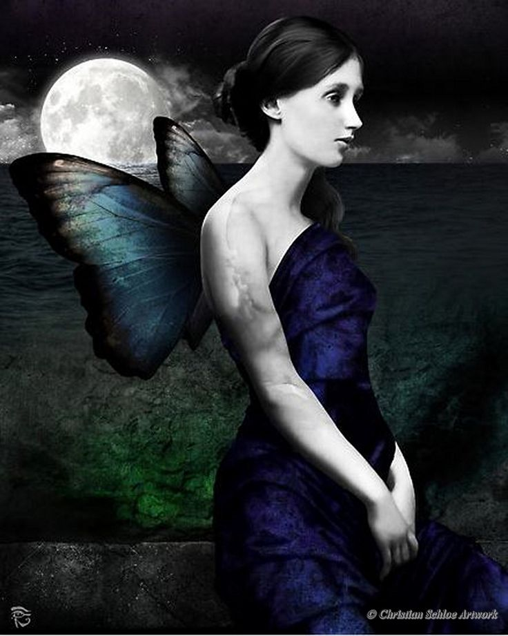 Night Within a Dream by Christian Schloe.