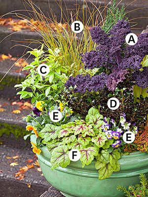 Fall / Winter Container Gardening