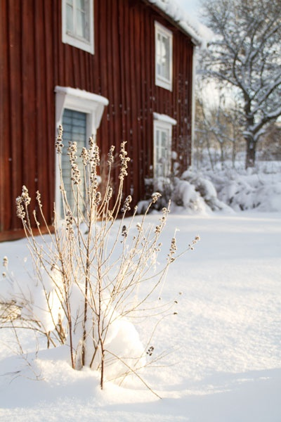 Winter in Småland, Sweden