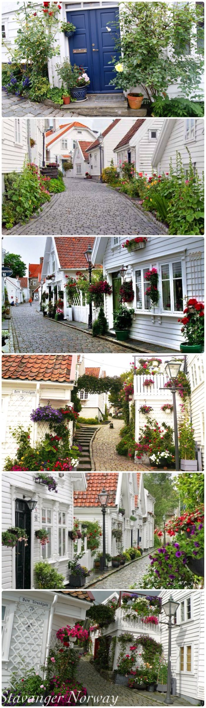 """Stavanger Norway """"Norway Beautiful side yards!  The more I see of Norway, the more I love it!"""" taken from Pinterest #Regionstavanger"""