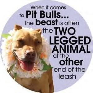 Pitbulls: Animals, Dogs, Truth, Pet, So True, Pittie