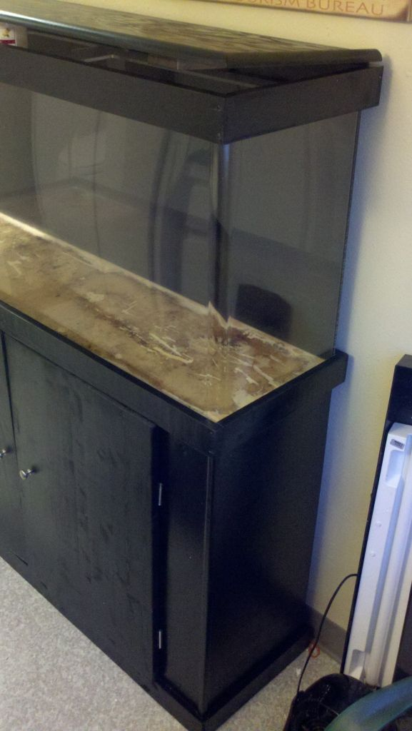 1000 ideas about 55 gallon aquarium stand on pinterest for 55 gallon fish tank with stand